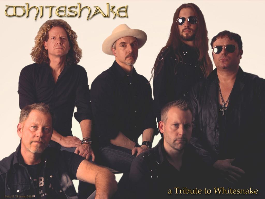 Whiteshake ehren Whitesnake